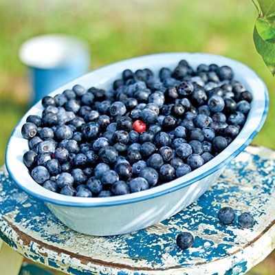 oh3319p96-blueberries-l.jpg
