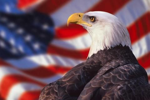 eagle in front of american flag.jpg