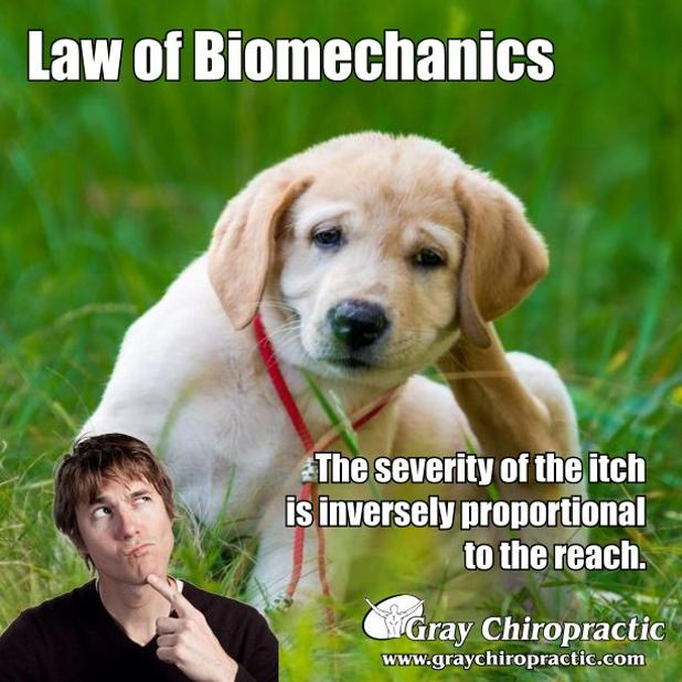 LawBiomechanics 1-19.jpg