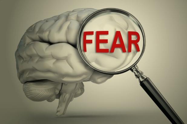 is-amygdala-really-brains-fear-center.jpg