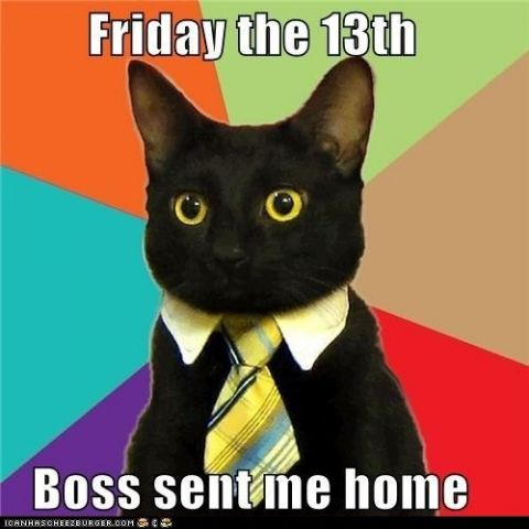 friday the 13th catt.jpg