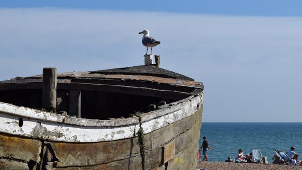 Seagullboat (1920x1080px).jpg