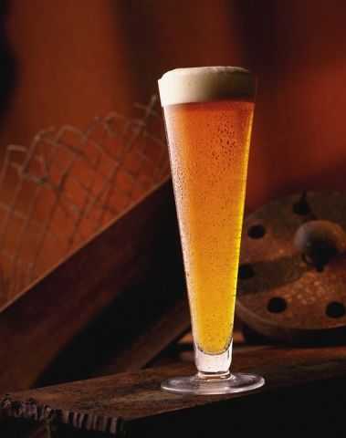 beer tall pilsner.jpg