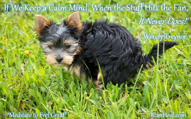 2019.03.13.If We Keep a Calm Mind When the Stuff Hits the Fan, It Never Does Copyright (c) 2019 by Wendy Treynor. All rights reserved..PNG