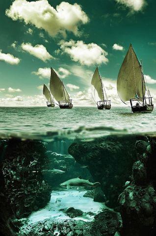 summer sailing.jpg