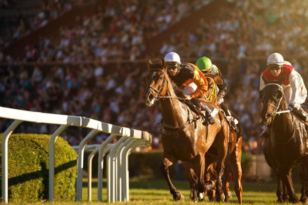 Horse-Racing-Software-Development-mobile-app-sports-betting-iPhone-Android-iPad  (3)192.jpg