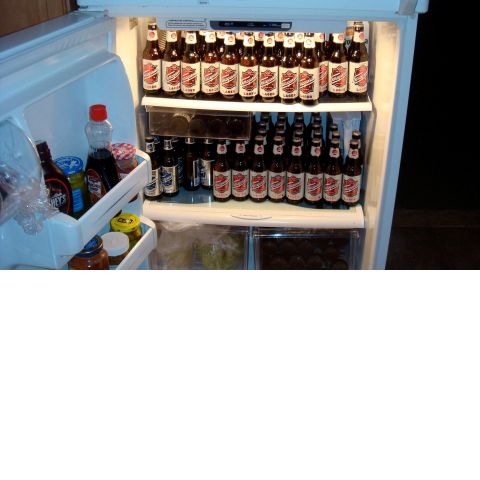 bottles in fridge.jpg