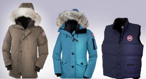 canada goose new.png