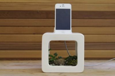 bloom-box-iPhone-docking-station-e1345162327210.jpg