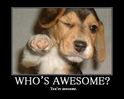who's awesome.jpeg