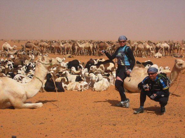 camel-caravan-sudan.jpeg