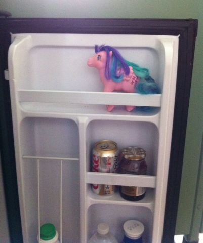 whizzer-fridge.jpg