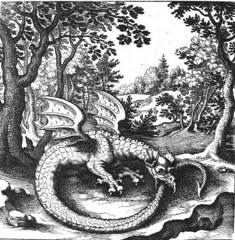 Ouroboros_dragon.jpg