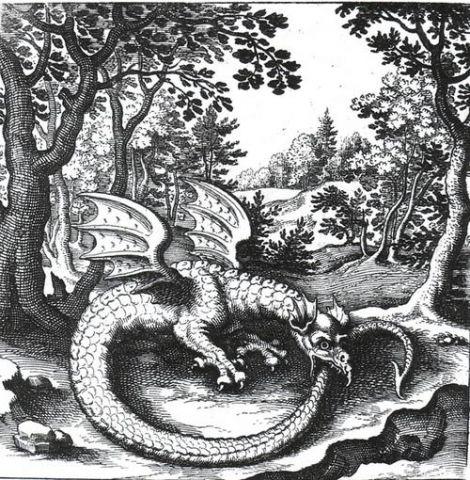 Ouroboros_dragon.jpg