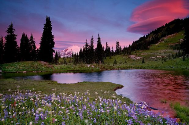 Mount Rainier by Jesse Estes .jpg