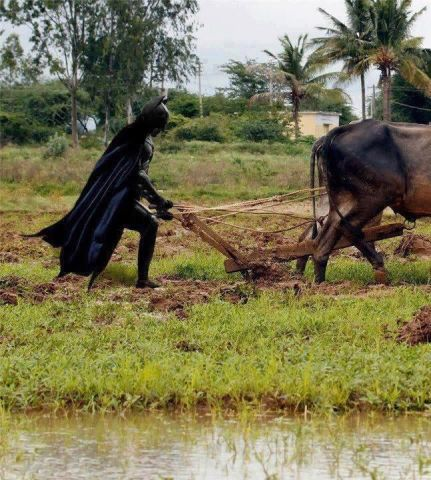 batman plowing.jpg