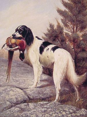 Hunting_Dog_With_Pheasant.jpeg