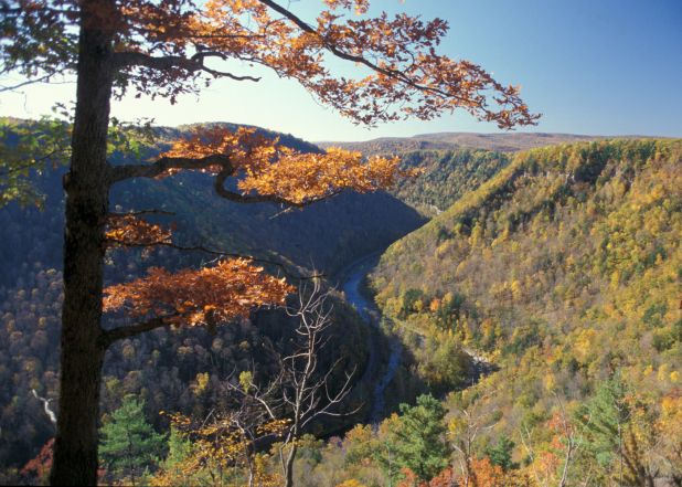 Pine Creek Gorge.jpg