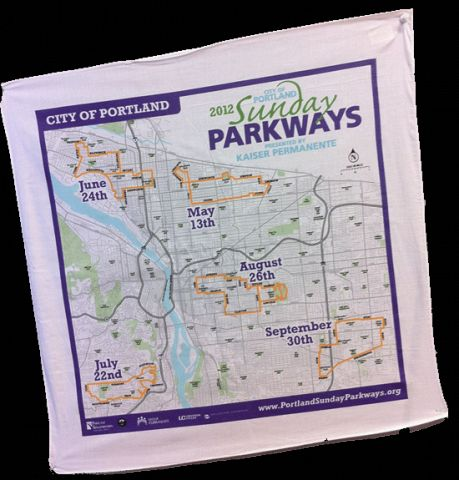 2012 Sunday Parkways Bandana small.gif