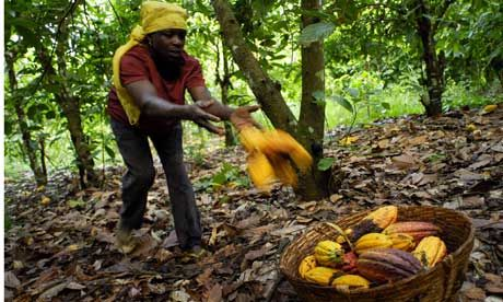Cocoa-farmer-in-Ghana-001.jpg