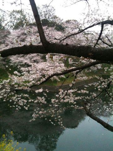 Photo on 2011-04-09 at 17:32.jpg