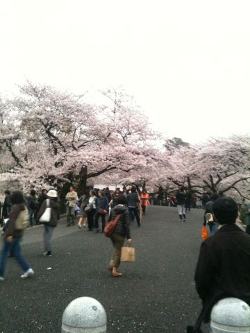 Photo on 2011-04-09 at 17:34.jpg