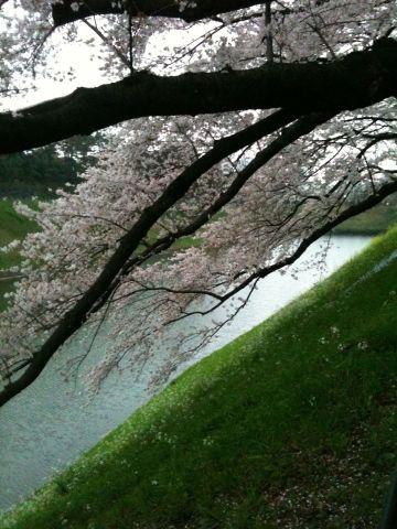 Photo on 2011-04-09 at 17:50.jpg