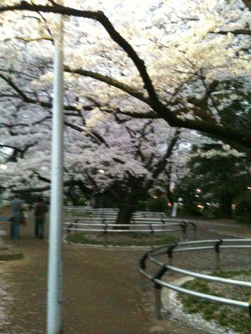 Photo on 2011-04-09 at 17:49.jpg