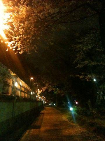 Photo on 2011-04-09 at 20:24.jpg