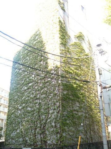 Photo on 2011-04-24 at 15:00.jpg