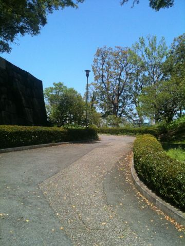 Photo on 2011-04-24 at 11:23.jpg