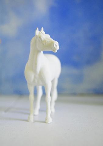 HorseGuard.jpg