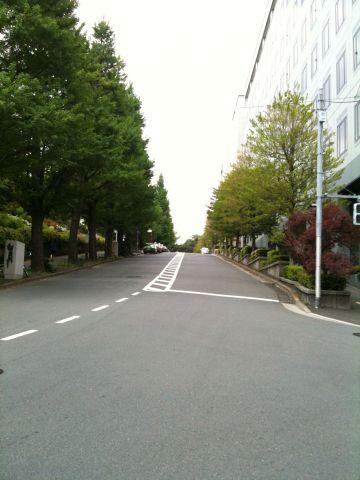 Photo on 2011-04-29 at 10:24.jpg