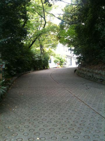 Photo on 2011-04-29 at 14:15.jpg