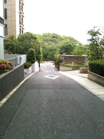 Photo on 2011-05-01 at 12:43.jpg