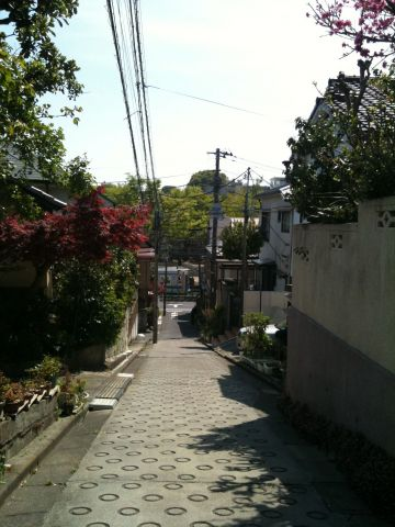 Photo on 2011-04-17 at 13:19.jpg