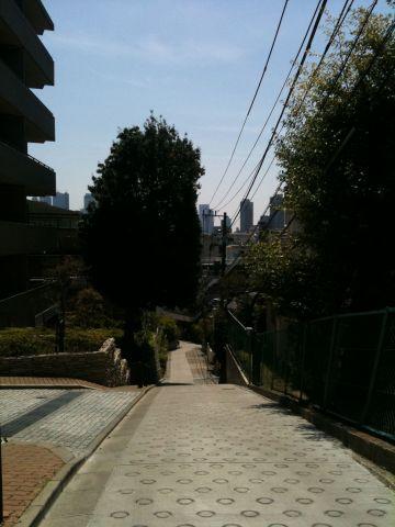 Photo on 2011-04-17 at 11:49.jpg