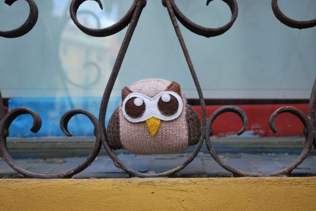 owly goes to spain