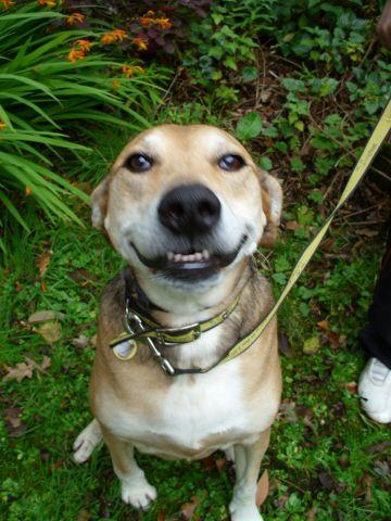 sasha smile.jpg