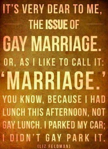 gaymarriagequote.jpg