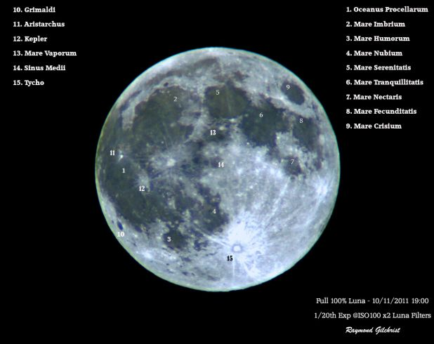 Luna_Annotated copy.jpg