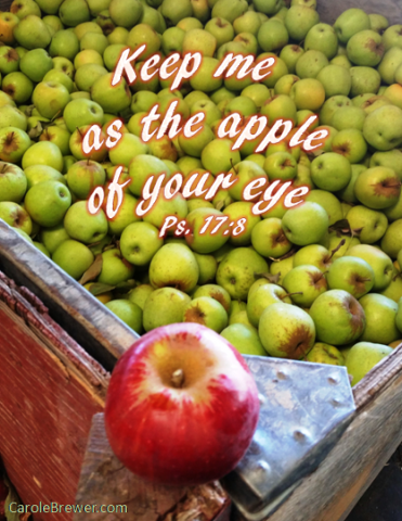 Apple of your eye.png