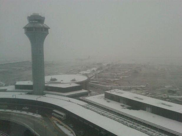 Snowy ORD IMG00021-20120112-1503.jpg