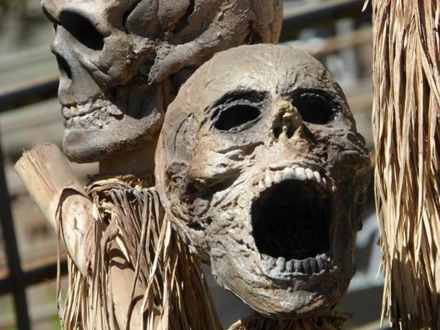 screaming-skull.jpg