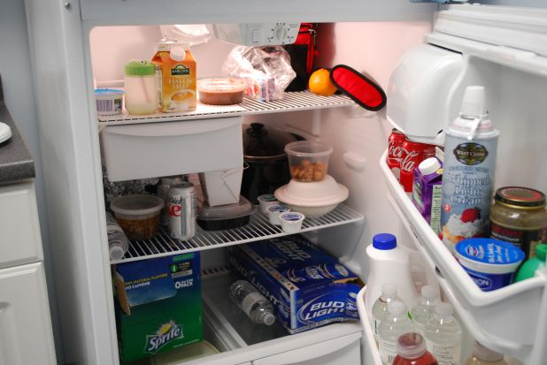 The Fridge of Freedom.jpg
