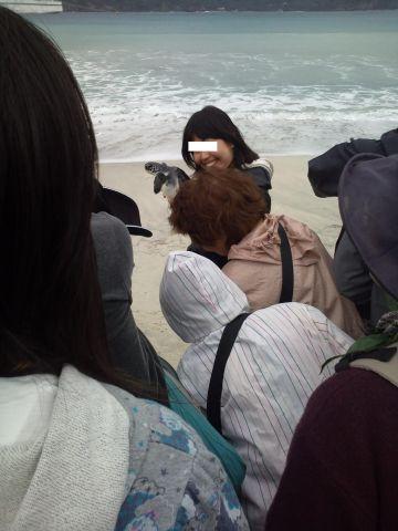 海ガメ放流シーン1.jpg
