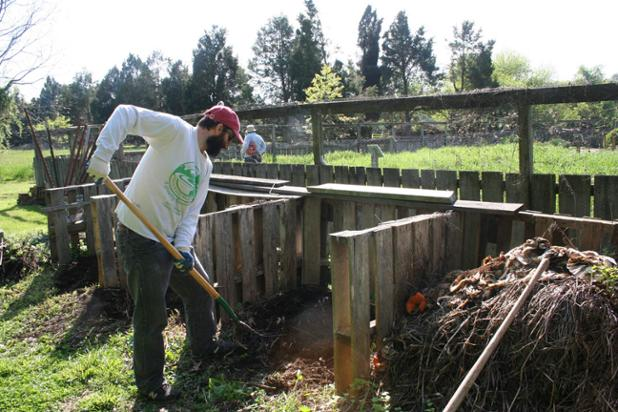 volunteer-turns-compost-at-the-museum-garden_5794645138_o.jpg