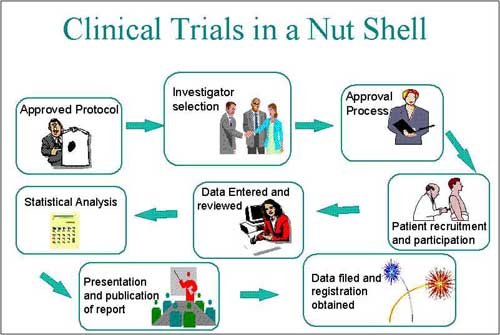 Clinical trial in a nutshell.png