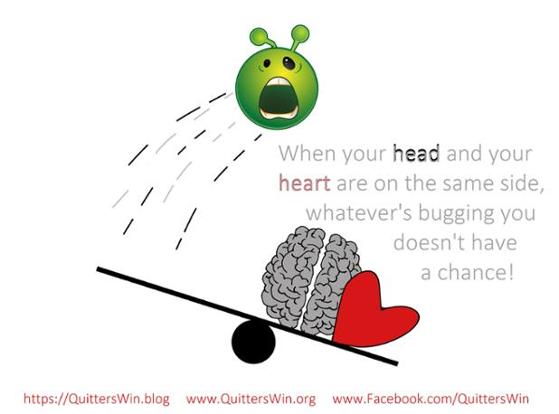 5.14.2017 brain heart together.jpg