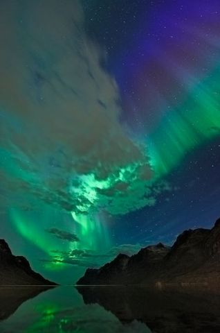 aurora-borealis-cme-september-clouds_26305_600x450[1].jpg
